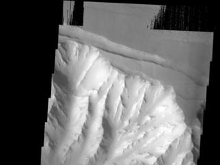 Melas Chasma Landslide
