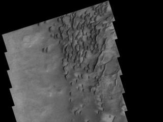 Dunes in Darwin Crater