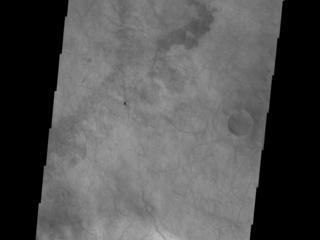 Dunes and Dust Devils
