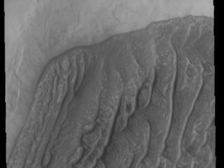 This image from NASAs Mars Odyssey shows a dune field on a crater floor in Terra Cimmeria. Dunes at high latitudes - near the polar caps - are affected by seasonal frost and ice.