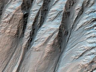 This image acquired on January 10, 2019 by NASAs Mars Reconnaissance Orbiter, shows large gullies on both the pole- and equator-facing slopes.