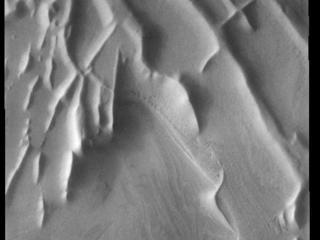 Angustus Labyrinthus