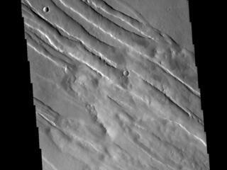 Tharsis Tectonics
