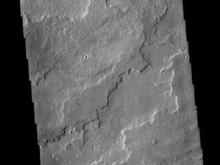 This image from NASAs Mars Odyssey shows a portion of the immense volcanic flow fields in the Tharsis region.