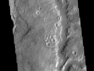Vichada Valles