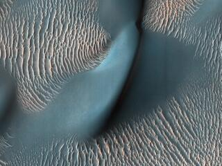 The High Resolution Imaging Science Experiment (HiRISE) camera aboard NASAs Mars Reconnaissance Orbiter captured these sand ripples and the large dune (at center) on Feb. 9, 2009.