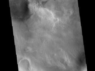 Noachis Terra Crater Dunes