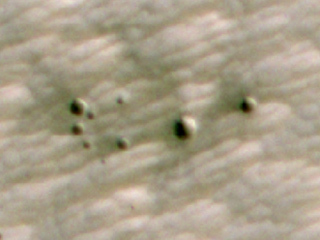 AI Spots a Cluster of Mars Craters: HiRISE's View