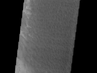 This image from NASAs Mars Odyssey shows a large sand sheet with surface dune forms, located on the complex floor of Rabe Crater.