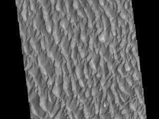 Proctor Crater Dunes