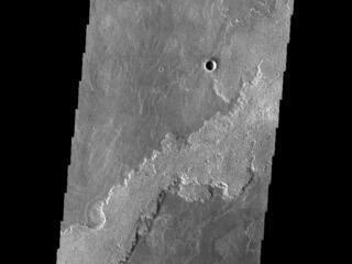 Daedalia Planum