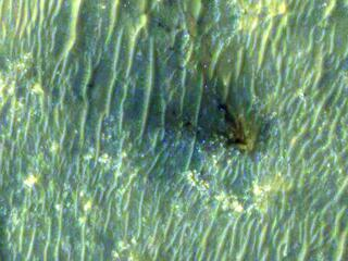 Close-Up of Perseverance Descent Stage on the Martian Surface