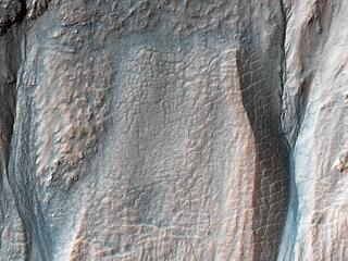 Crater Gullies at Multiple Elevations
