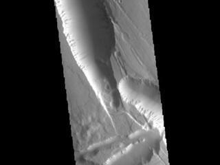Elysium Chasma