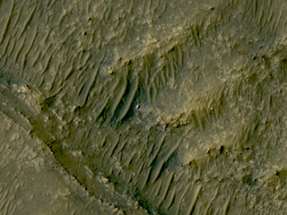 View image for HiRISE Spots Perseverance in 'South Séítah'